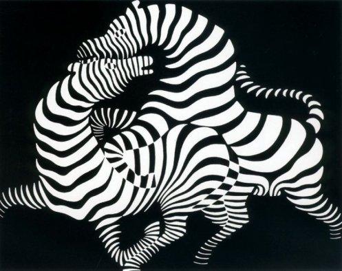 cebras-1950