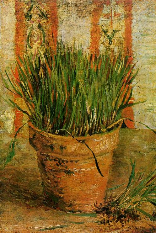 flowerpot-with-chives-1887