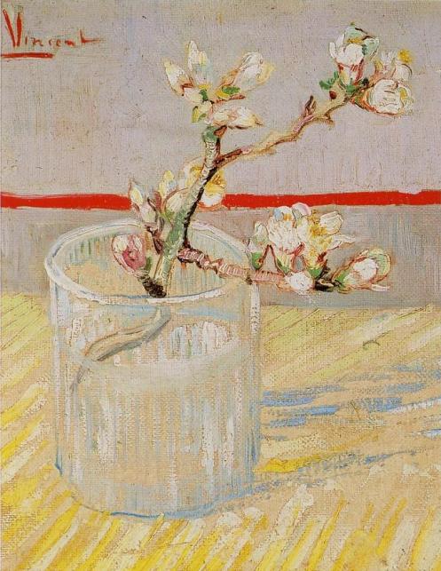 tige-fleurie-damandier-1888