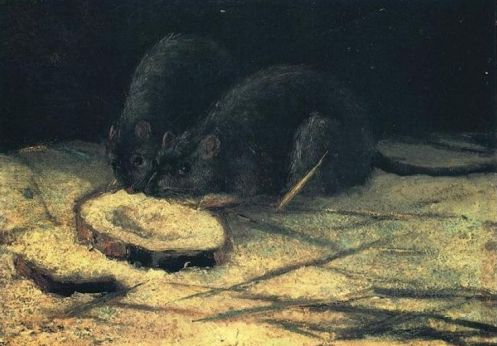two-rats-18841