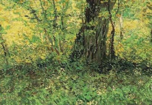 undergrowth-18871