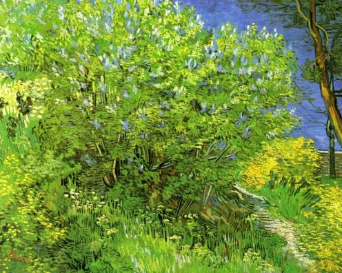 Lilacs 1889